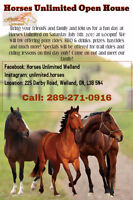 Horses Unlimited Open House