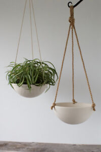 ISO hanging and wall planters
