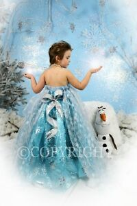 NOW BOOKING CINDERELLA & FROZEN PHOTO SESSIONS London Ontario image 7