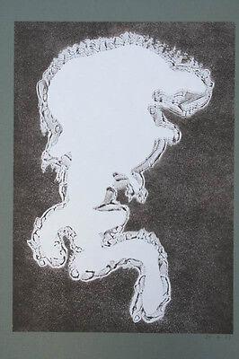 Erich St(umpenhorst) Heger, 1908 Oldenburg - 1992
