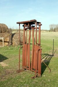 Auto head gate for cattle