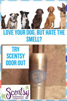 Is your pet smelling up your house?