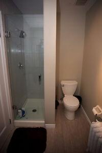 5 BEDROOM STUDENT RENTAL FOR WESTERN STUDENTS UWO London Ontario image 2