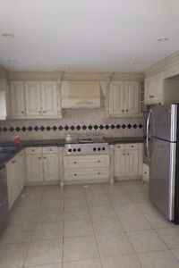 High End Kitchen - Cabinets, Quartz, Cook top, Ovens, Sinks