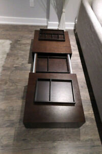 Modern Wood Coffee Table with Built in Storage