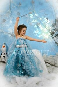 NOW BOOKING CINDERELLA & FROZEN PHOTO SESSIONS London Ontario image 8