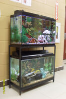 AQUARIUMS - DUAL 30 GALLON LONG PACKAGE WITH STAND