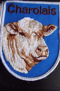CATTLE AND HORSES PATCHES