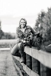 Canine and Equine Photographer