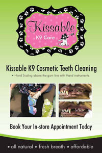 kissible k9 cosmetic teeth cleaning