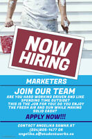 MARKETERS WANTED