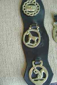 Brass Horse Harness Medalions Peterborough Peterborough Area image 4