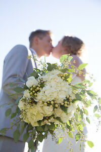 Wedding Wire's TOP Kitchener Wedding Photographer Starting @$400 Kitchener / Waterloo Kitchener Area image 5
