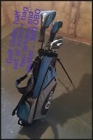 Golf bag and clubs... $60