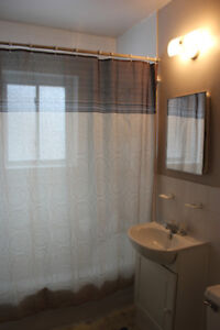 1 bedroom  well-maintained and clean  apartment