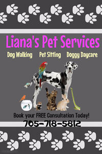 Dog Walking, Boarding, Doggy Daycare: Liana's Pet Services