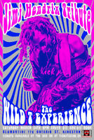 Jimi Hendrix tribute performed by the Wild T Experience