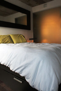 Appartement / condo Griffintown, sud ouest, atwater (Septembre)