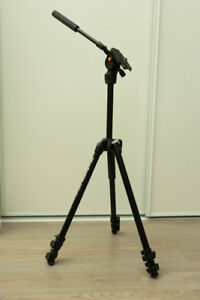 Manfrotto 290 Light tripod with Befree pan head