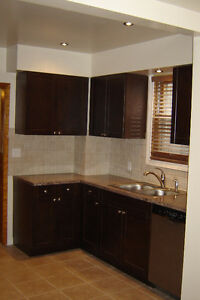 Brothers Home Improvements/ Insurance contracts/ BATHROOMS Windsor Region Ontario image 5