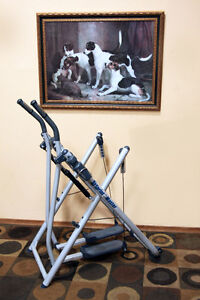 Like New!!! SPRINT MASTER EXCERCISE MACHINE SEE VIDEO