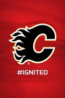 CALGARY FLAMES TICKETS-Sect 212 Rw 14 EXCELLENT SEATS CENTRE ICE