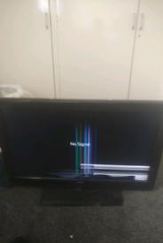 Bush TV