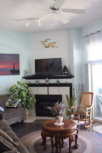Grand Bend river view year round condo.New price, open to offers Kitchener / Waterloo Kitchener Area image 6