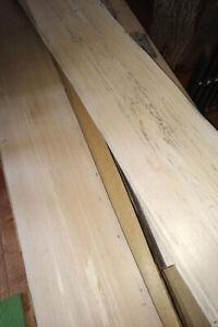 Live Edge Beech Wood Slabs
