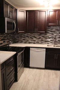 Townhouse with BRAND NEW cabinets and quartz countertops!