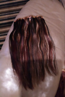 Human Hair Extensions  $75.00