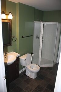 One Bedroom Basement Apartment in Paradise St. John's Newfoundland image 3