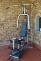 Nordic Flex workout strength machine