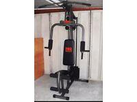 Pro Power Multi-Gym (Good Condition)