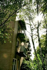 2 BDRM APT-BOUTIQUE-JUBILEE&WALNUT-SECURE BLDG-AVAIL MAY 1!!!!!!