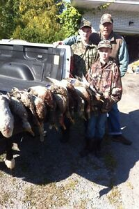 Fully Guided Waterfowl Hunts (high success rate)  Cambridge Kitchener Area image 6