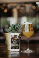 Photography At Local Craft Breweries!