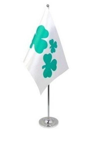 """SHAMROCK DELUXE SATIN TABLE FLAG 9""""X6"""" CHROME IRELAND IRISH EIRE"""