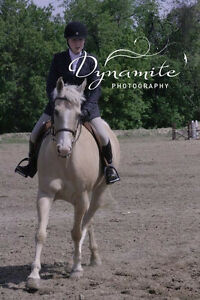 English riding lessons both recreation and show team programs Kingston Kingston Area image 5