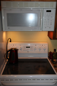 General Electric Microwave + Delivery + Other Appliances
