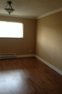 Newly renovated basement suite rent in Delta