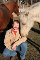 Doug's Equine Massage Therapy