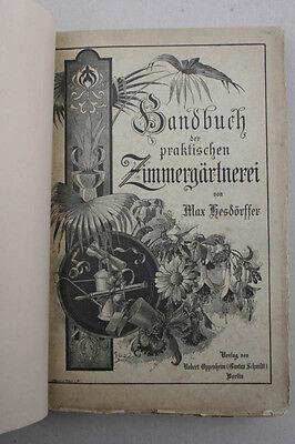 Max Hesdörffer - Handbuch der praktischen Zimmergärtne