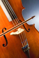 Violin, Viola, Cello, Double Bass, Guitar Fiddling group lessons
