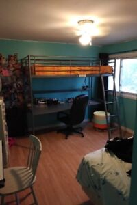 bunk bed and desk top