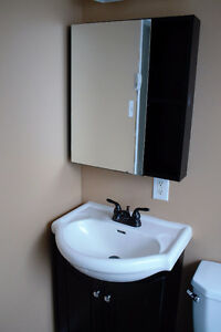 2 Bedroom House Close to MUN and Downtown - 5 Summer Street St. John's Newfoundland image 9
