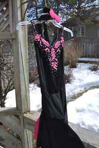 Beautifully Detailed Skating Dress Kitchener / Waterloo Kitchener Area image 3