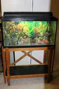 Multiple Aquariums