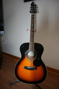 Guitar, stand & tuner