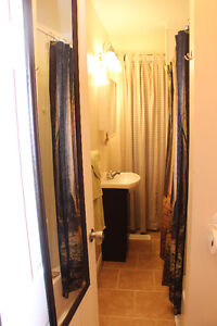 GREAT INVESTMENT OPPORTUNITY OR STARTER HOME Kitchener / Waterloo Kitchener Area image 7